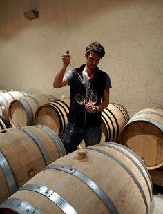 Winemaker François des Moutis at Domaine Jean Fery & Fils - Burgundy