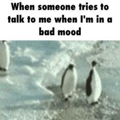 Bad mood / iFunny :)