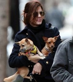 Academy Award winner Sandra Bullock is a big-hearted dog lover who has adopted three dogs with special needs: Poppy is a Chihuahua-Pomeranian mix with three legs, Ruby is a two-legged Chihuahua, and BeBe (not pictured) is a Chihuahua that's missing an eye.