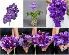 orhidee vanda mov in buchete de mireasa, nasa si domnisoare de onoare Nasa, Crown, Blog, Jewelry, Corona, Jewlery, Jewerly, Schmuck, Blogging