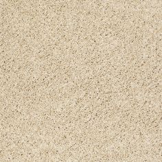 """Feather your nest with this so soft wall to wall carpeting by Shaw Floors in style """"High Style Twist"""" color Field of wheat."""
