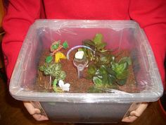 Sciences : une expérience sympa pour illustrer le cycle de l'eau What Is Water Cycle, Water Cycle Project, Weather Unit, States Of Matter, Kindergarten Science, Inspiration For Kids, School Projects, Science Nature, Activities