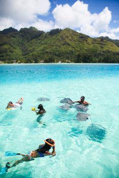 Moorea, Tahiti. Pinterest: @martakallsoy