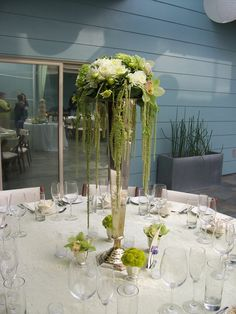 green amaranthus   ... green cymbidium orchids and lots of dripping green amaranthus. But