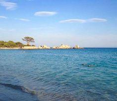 Palombaggia plage en Corse