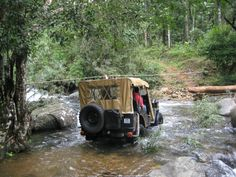 Wayanad :- The hills, forests, beautiful landscapes, caves, waterfalls and islands make the place a heaven for every traveler