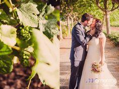 Momentos | Wedding Planner Barcelona | Organización de bodas Barcelona » La boda de Montse & Jose. Wedding Photography. Reportaje novios. Viñedo. Vineyard
