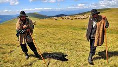 Ardelenii-s lenţi și moldovenii-s beţivi?