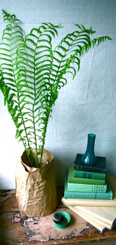 love the fern. easy to do this at home in a thrifted vase.