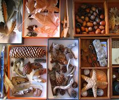 """Tins or boxes for collecting """"toppings"""" and other decorations to use on mud pies"""