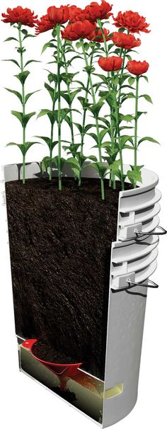 You can make your own self-watering container from a couple of 5-gallon bucket.