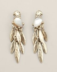 Elena Parrot Cluster Earring........CHICO'S