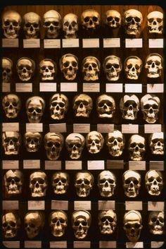 Mutter Museum of Medical History, Philadelphia