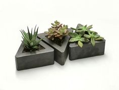 Triangle Concrete Planter  set of 3 by roughfusion on Etsy