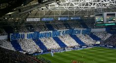 Schalke 20150503009 mm