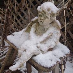 Prim With Love ~ My Winter Garden