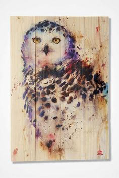 The Daydream Sig Series Snowy Owl Indoor/Outdoor Wall Art will bring a vibrant accent inspired by nature to your indoor or outdoor living space. Outdoor Wall Art, Outdoor Walls, Indoor Outdoor, Outdoor Living, Cedar Walls, Cedar Wood, Snowy Owl, Local Artists, Wood Wall Art