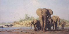 artworks by David Shepherd click images for titles Asian Elephant, Elephant Love, Elephant Art, Baby Elephants, Wildlife Paintings, Wildlife Art, Animal Paintings, Survival Shop, Modern Artists