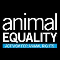 In this brand new podcast, Igualdad Animal / Animal Equality's Laura Gough and Sharon Núñez speak with ARZone about the how and why @Animal Equality conducts anti-speciesist vegan animal rights advocacy, what they have learned from their international experience, and what they see as some of the best ways forward for the movment. They also respond to some criticisms that have been made of Animal Equality's efforts.