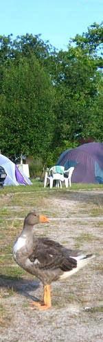 Franfrijk Rural campsite
