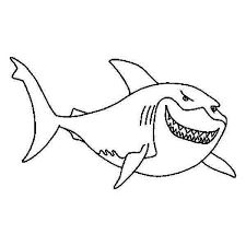 Image Result For Shark Pictures To Color