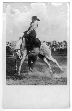 Unidentified trick rider on a bucking bronco, Cowgirl And Horse, Cowboy And Cowgirl, Horse Girl, Rodeo Cowboys, Real Cowboys, Cowgirl Pictures, Old West Photos, Vintage Cowgirl, Bull Riding