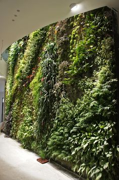 Vertical Garden, indoor part, in a private house, Beirut