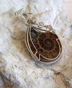Opalized Ammonite Fossil Wire Wrapped by desertshinejewelry, $55.00
