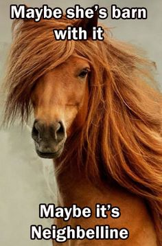 maybe shes barn with it  maybe it's neighbelline