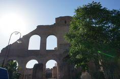 Foro Romano, Rome, Italy : Maxentius Basilica