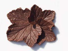 rips-sjokoladeblad