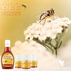 Forever Living has the highest quality aloe vera products and is recognized as the world's leading multi-level marketing opportunity (FBO) for forty years! Forever Aloe, Forever Living Aloe Vera, My Forever, Tapas, Aloe Lips, Bee Propolis, Forever Business, Bee Pollen, Forever Living Products