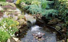 Gartenteiche Bilder Teich anlegen Flusssteine Pflanzen