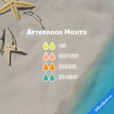 Afternoon Mojito - Essential Oil Diffuser Blend