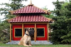 Oh, my.  Paint this in a deep pink with white trim, and it would be the perfect playhouse for my Tessa Crested.  :)