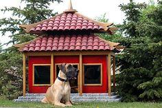Oriental dog house