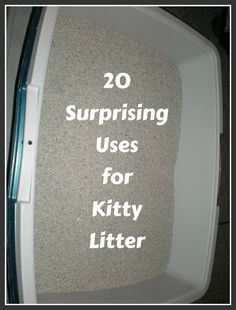 20 Things You Never Knew You Could Do With Kitty Litter ... see more at PetsLady.com ... The FUN site for Animal Lovers