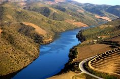 I Like It Wild And Pure...Always At Douro Valley In My Country Portugal !... http://samissomarspace.wordpress.com