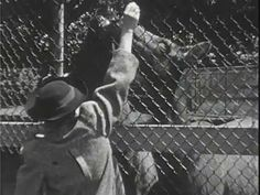 """Clip from """"A Day in Woodland Park,"""" 1938 Woodland Park Zoo, Parks And Recreation, Washington State, Seattle, Film, Movie, Film Stock, Cinema, Films"""