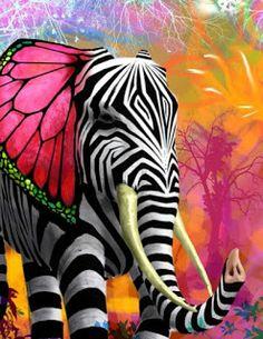 Colorful Zebra Butterfly Elephant