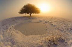The best Hungarian nature photos. Amazing pics.