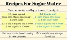 Why feeding honey bees sugar water is a good idea. How to make bee sugar water with the proper ratio . And when it is time to stop feeding bees sugar water. Sugar Water For Bees, Feeding Bees, Bee Food, Bee News, Bee Hive Plans, I Love Bees, Backyard Beekeeping, Garden Bugs, Bee Happy