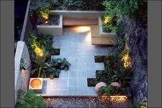 Small patio garden. A low maintenance, minimalist garden, is an extension of the house.