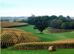 Iowa, Jodi's Home State