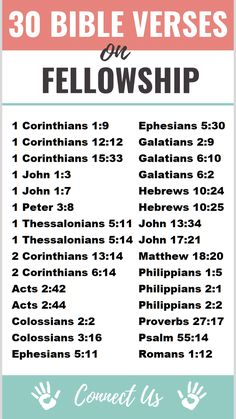 Here are the 30 most meaningful Bible scriptures on fellowship. 1 Thessalonians Therefore encourage one another and build one another up, just as you are doing. Bible Study Notebook, Bible Study Plans, Bible Plan, Bible Study Tips, Bible Journal, Bible Lessons, Favorite Bible Verses, Bible Verses Quotes, Bible Scriptures