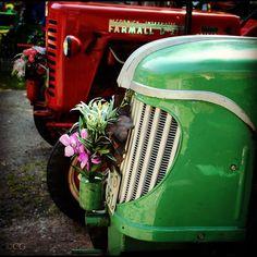 Antique Tractors.