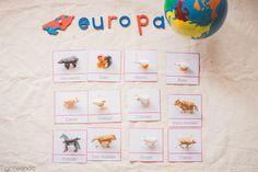 Proyecto continentes Montessori I (Imprimible gratuito) - Tigriteando