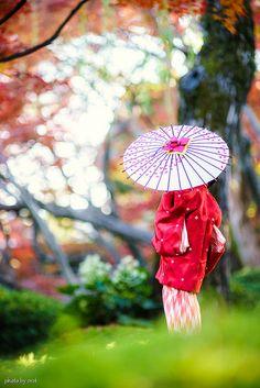 Japanese woman in kimono with umbrella