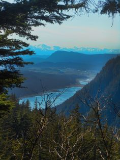 Let's take a ride on the Mount Roberts Tramway in Juneau. Find out what you can expect when hiking the trails on Mount Roberts. Juneau Alaska, Alaska Travel, Alpine Loop, Sitka Spruce, Get Tickets, Travel Planner, Native Art, Hiking Trails, Habitats