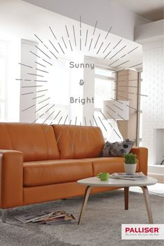 Choose a rust hued sofa for a mellow pop of colour in your living room.